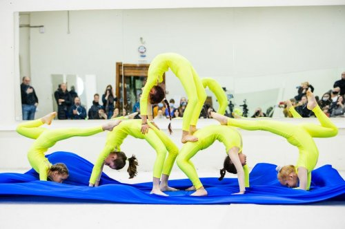 Логотип организации Эстрадно-цирковая студия акробатики Эквилибрис